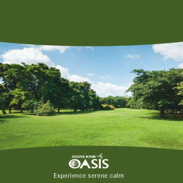 ozone-kns-oasis-featured-image